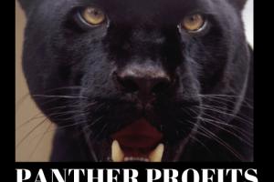 Panther-Profits-Review