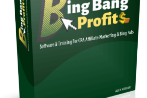 Bing-Bang-Profits-2-Review