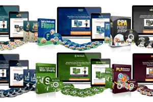 Business-Models-PLR-Firesale-Review