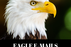 Eagle-Emails-Review