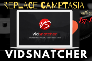 VidSnatcher-Review-replace