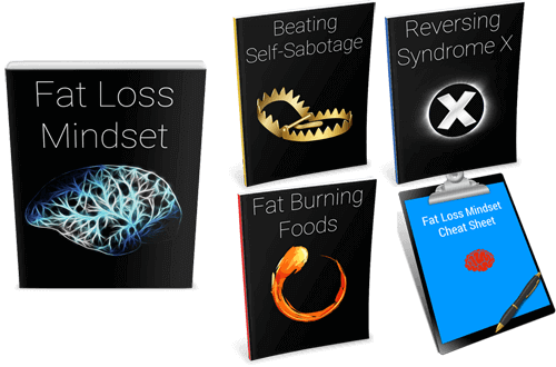 Fat-Loss-Mindset-PLR-Review-Cover