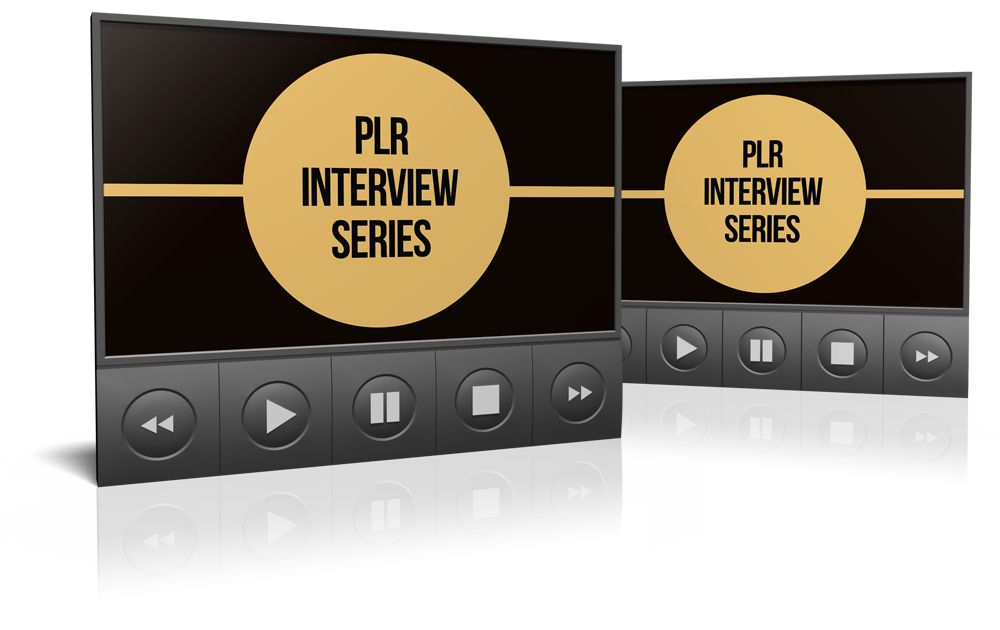 Internet-Marketing-Newsletter-PLR-Bonus-1