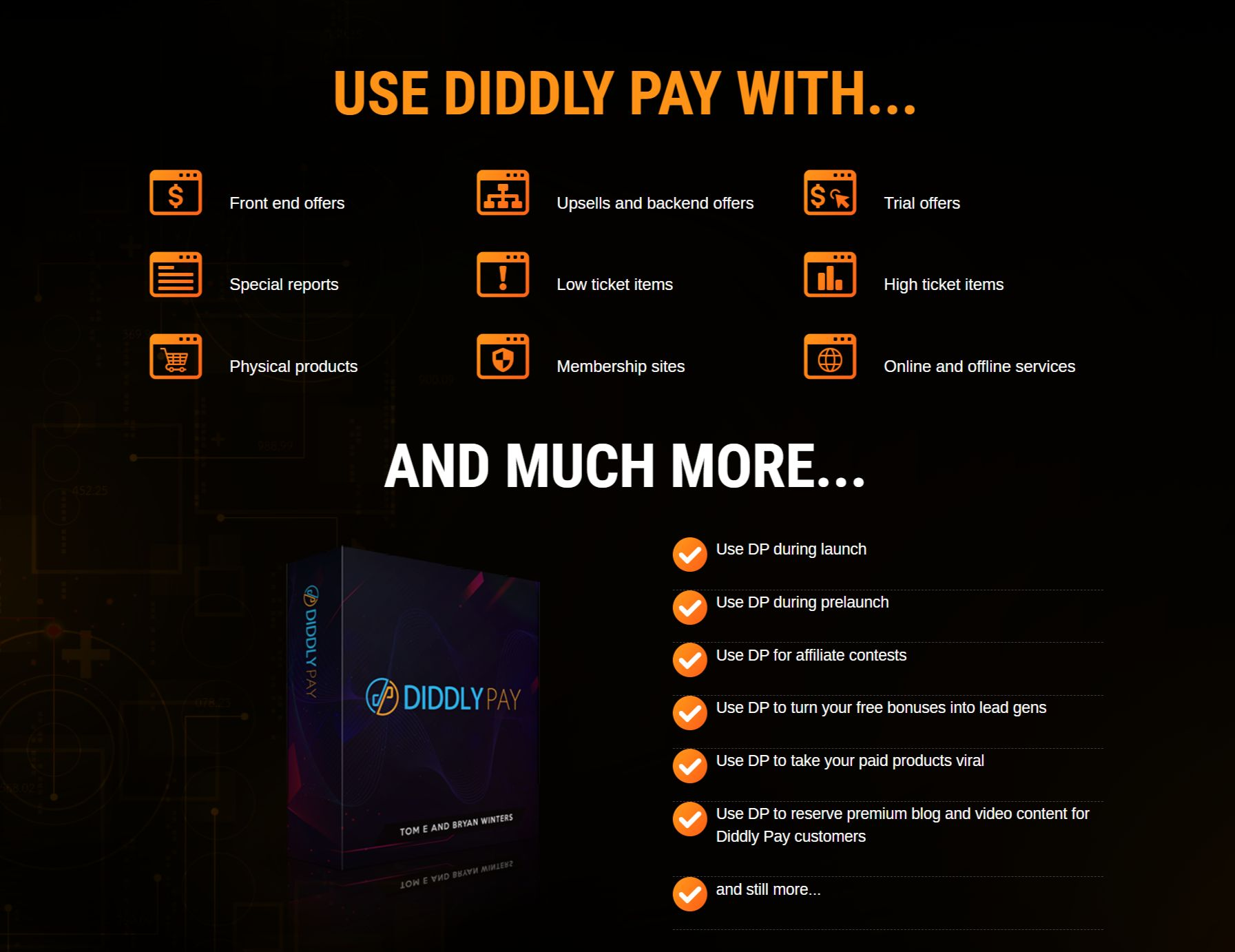 DiddlPay-Pro-Potential