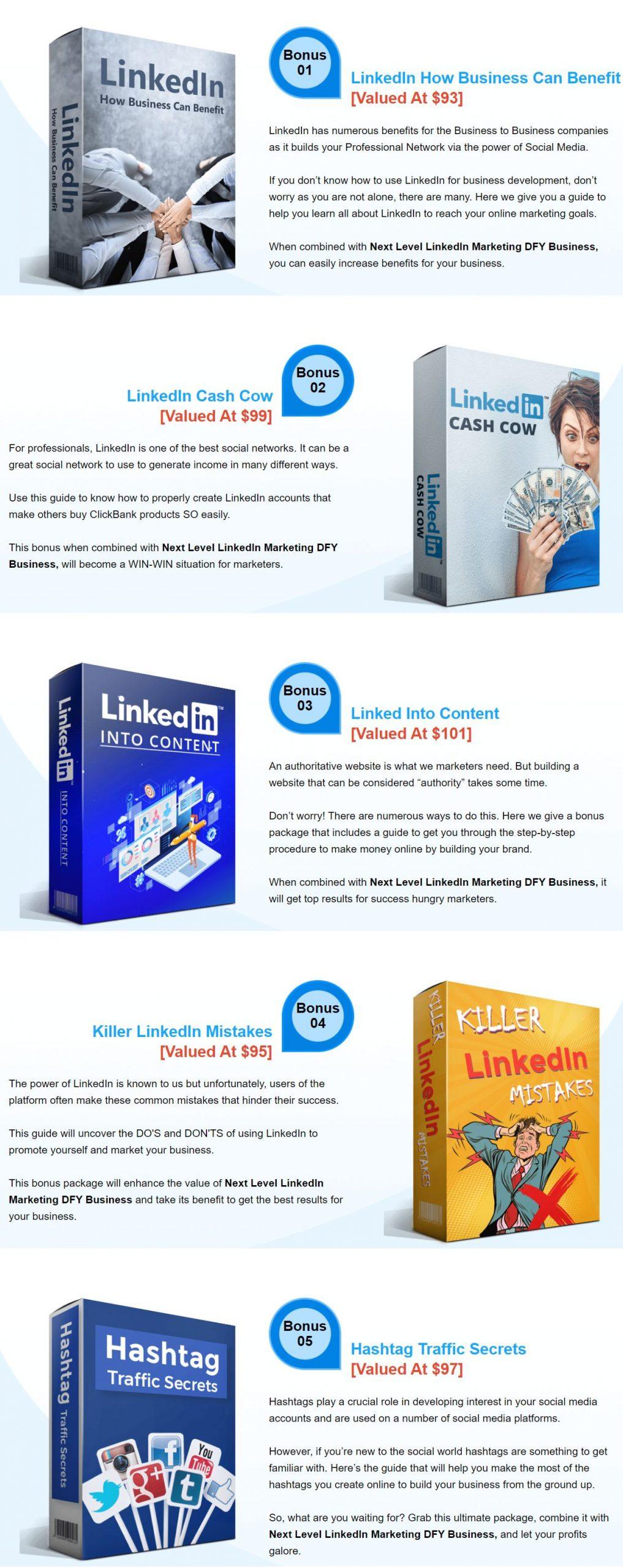Next-Level-LinkedIn-Marketing-DFY-Business-PLR-Bonus-1