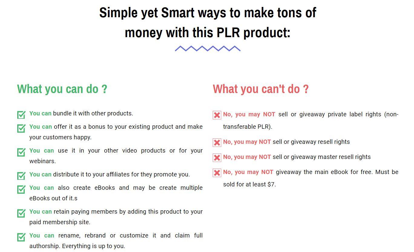 Google-Smart-Ads-Mastery-PLR-Feature