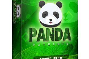 Panda-Payments-Review