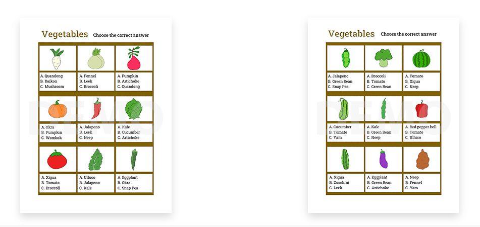 Hello-Veggies-Activity-Kit-Module-3