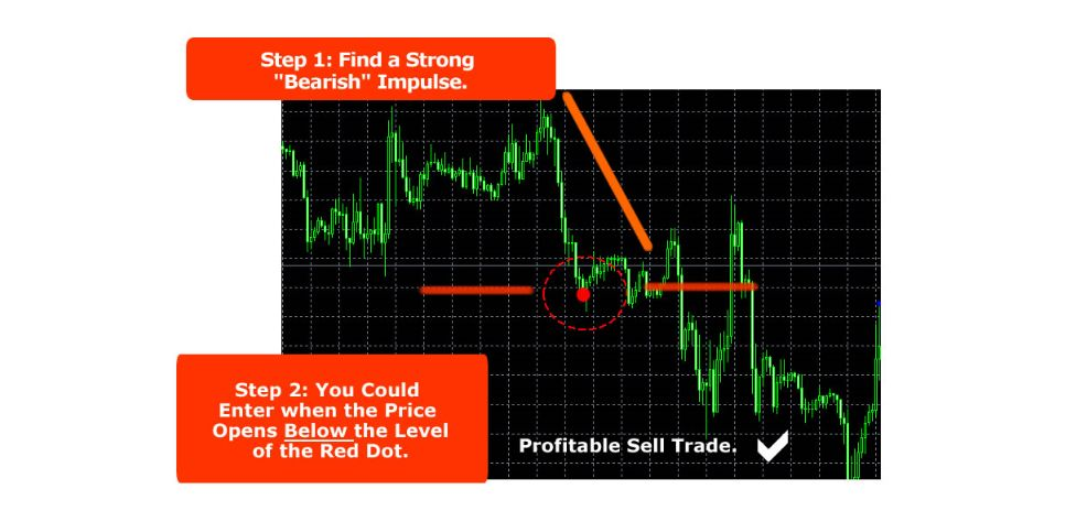 Forex-Software-And-Training-PLR-1