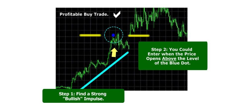Forex-Software-And-Training-PLR-2