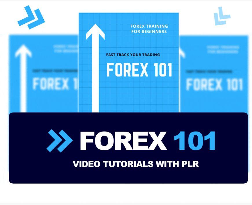 Forex-Training