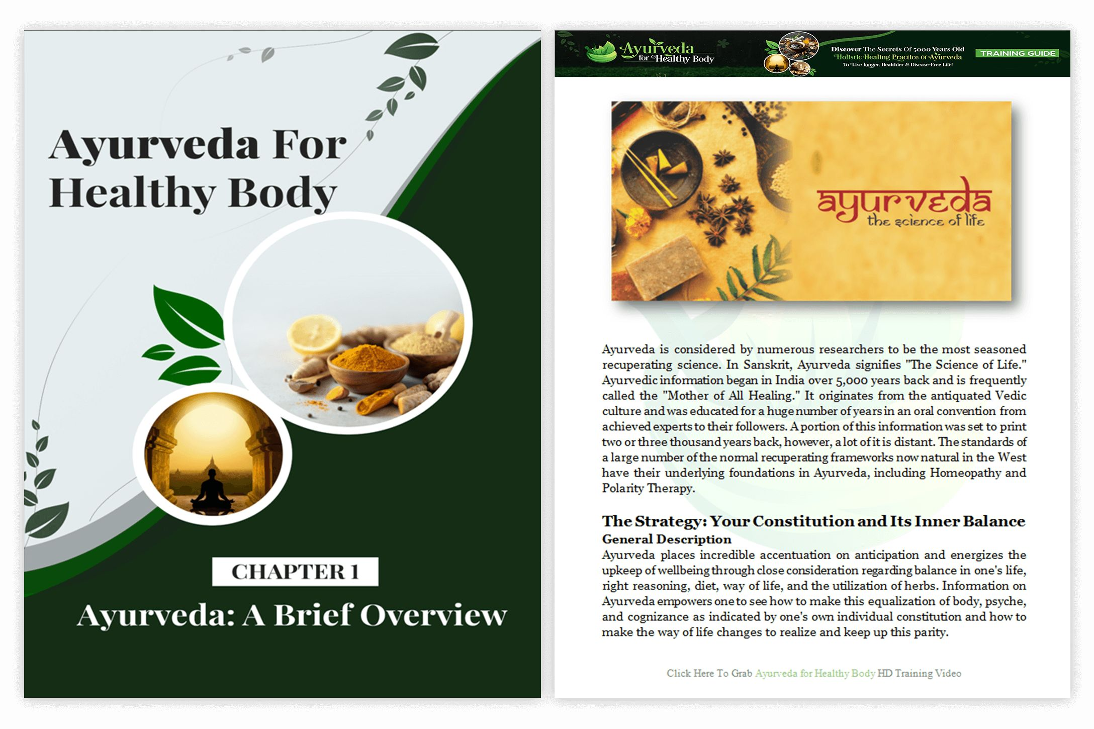 Ayurveda-For-Healthy-Body-PLR-feature-2