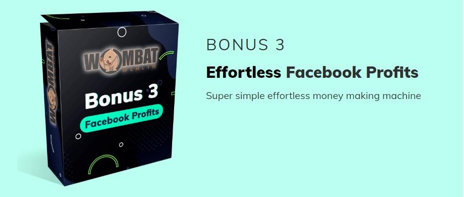 Wombat-Wealth-bonus-3