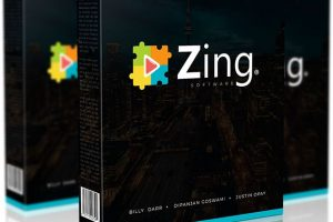 zing-review