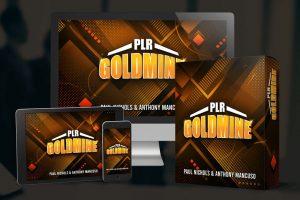PLR-Goldmine-Review