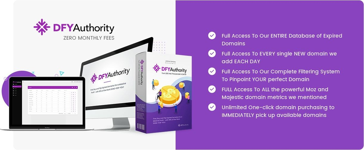 DFY-Authority-price