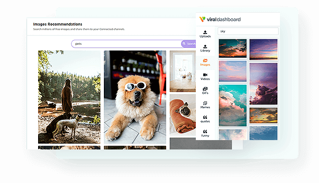 ViralDashboard-feature-13