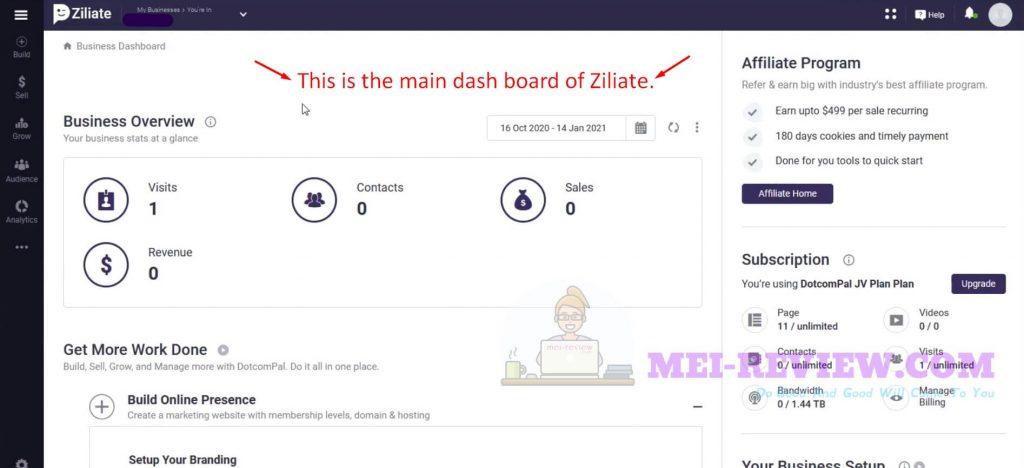 Ziliate-Demo-1-dashboard