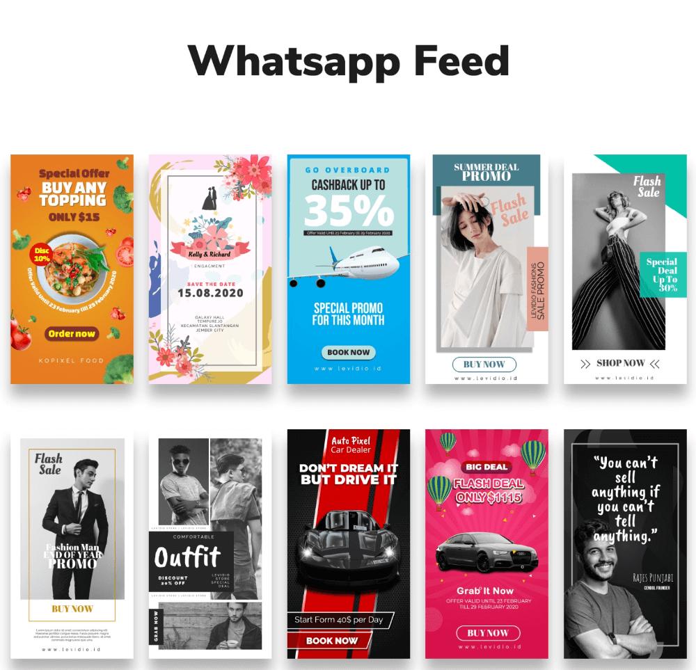 Levidio-The-Feed-module-8-whatsapp-feed