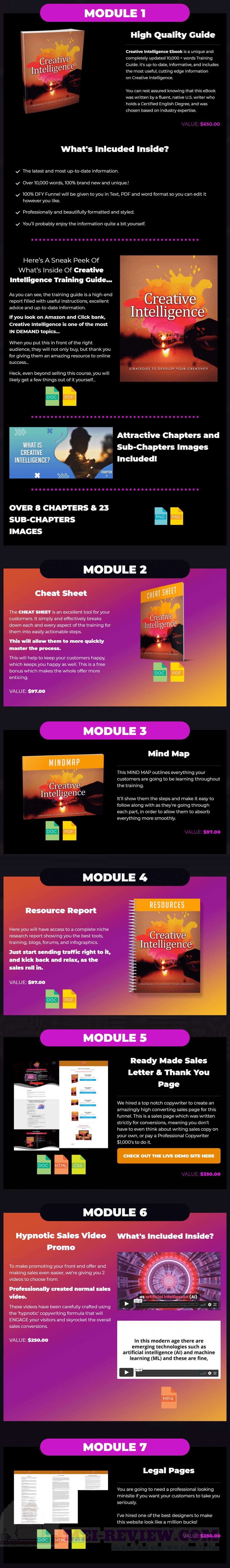 Creative-Intelligence-PLR-feature-1-module