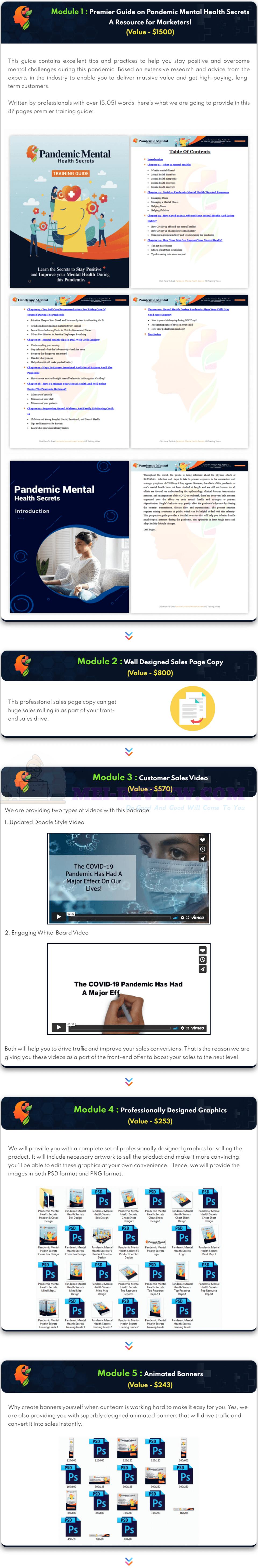 Pandemic-Mental-Health-Secrets-PLR-content