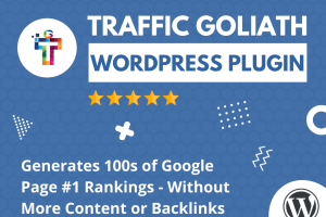 Traffic Goliath Review – The Once-In-Life Way To Stay On The Top Of Google Search Ranking