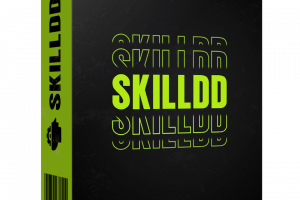 Skilldd Review – Secrets To Have A Successful Business On Fiverr