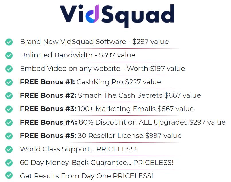 VidSquad-price