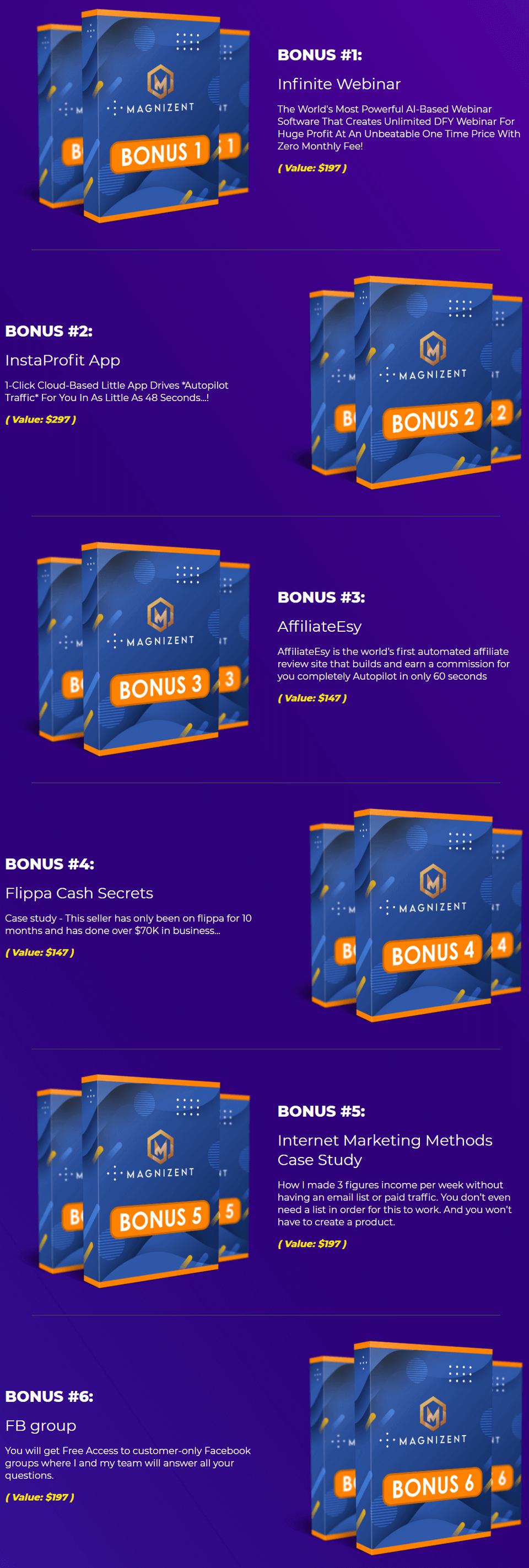 Magnizent-bonus